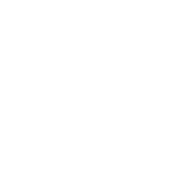 Wald - Natur - Tannen - Geschenk