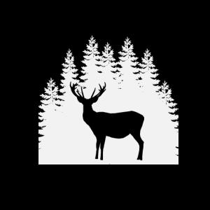 Natur - Wandern - Reh - Hirsch