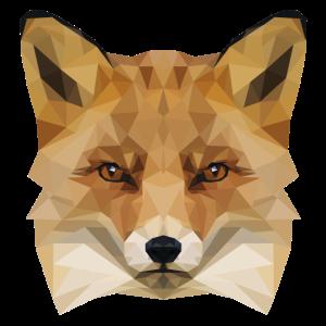 Polygon Fuchs