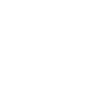 spartans neu