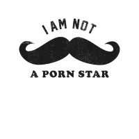I am not a Pornstar ich bin kein Pornostar Shirt