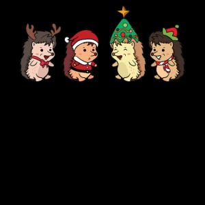 Igel Weinhachten Weihnachtsmann Köstum Geschenk