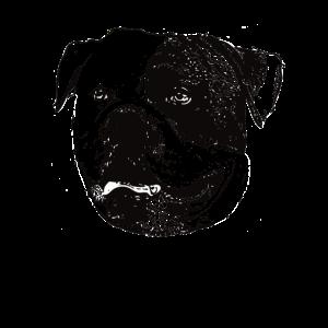 American Bulldoggesicht