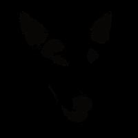 Miniatur-Bullterrier