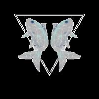 Sternzeichen Fische Sternbild Astrologe Horoskop