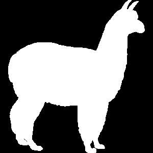 Lama Alpaka weiße Silhouette