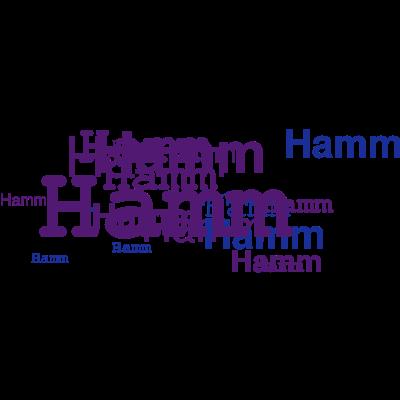 hamm  - Stadt-Tshirt-Hamm    - hamm geboren,hamm - T- Shirt,hamm,das geschenk aus hamm,STADT hamm,Alter hamm