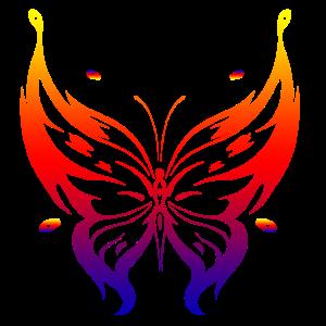 Schmetterling Butterfly
