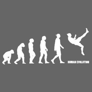 zlatan evolution white1