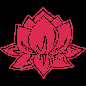 Lotus, Buddha, Mediation, Erleuchtung, Yoga, Om