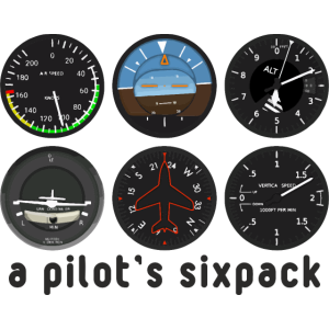 Pilot Flugzeug fliegen Flugsport Geschenkidee