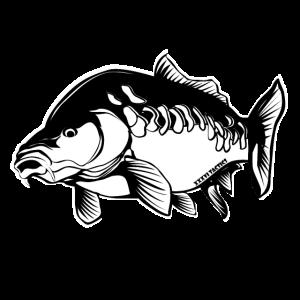 zeilenkarpfen Karpfen Angler Geschenk Carpfishing