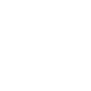 Vintage klassische Retro Queens New York City Neuheit
