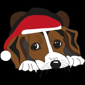 Weihnachtsbeagle