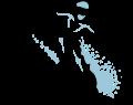 Motif Skieur