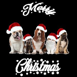 03 Tirische WeihnachtenTirische Weihnachten Hund K