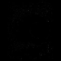 Chinesisches Sternzeichen-Schwein-Auszug