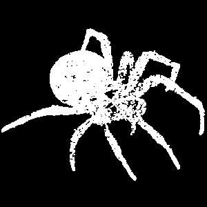 Grunge Spinne - spider distressed
