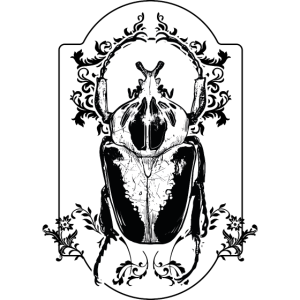 Insekt Käferart Ornament Gothik Beetle Wald Natur