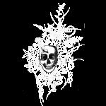 tête de mort222