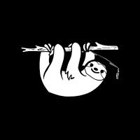 Master 2018 Faultier Sloth Studium Student Feier