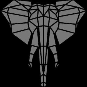 Elefant 8