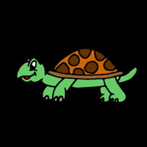 Schildkröte Lustieg