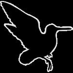 rampant_woodcock