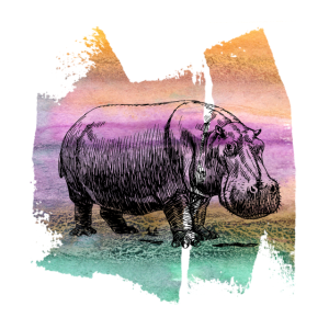 Nilpferd Flusspferd Hippo T Shirt