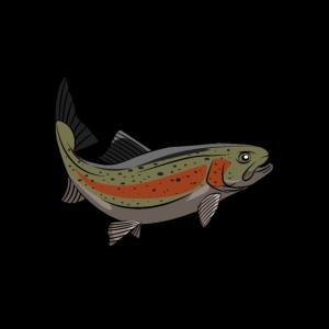 Forelle Lachs Salmonide Angler Shirt Fang Geschenk