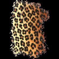 Leoparden Fell Muster
