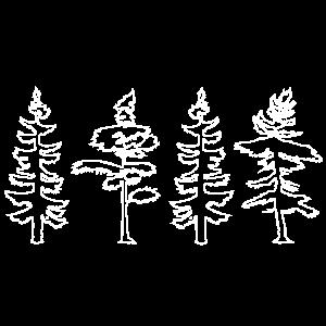 Wald Baum Bäume Nadelbaum Camping Zelt Geschenk