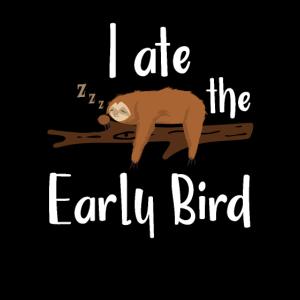 Faultier Früher Vogel Langschläfer Morgenmuffel
