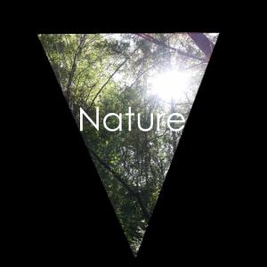 Nature Wald Sonnenstrahlen Geschenk Natur