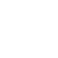 Schmetterling modernes Design