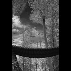 Schwarz-weiß Bild mit einer Brück