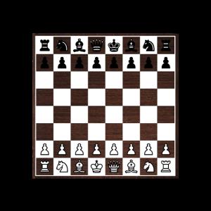 Chess what else Schach Spiel Partie Geschenkidee