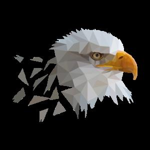 Adler Polygon Puzzle Vogel Tierliebe Geschenk
