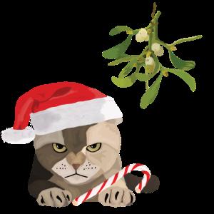 Katze l grimmig Weihnachten Mistel Zuckerstange