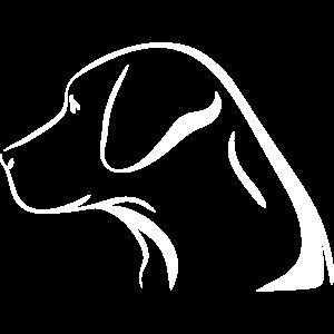 labrador retriver golden retriever hund geschenk