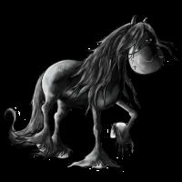 Black Pearl - Friesian Horse - Friese - Pferd