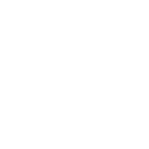 Elch im Dunkeln