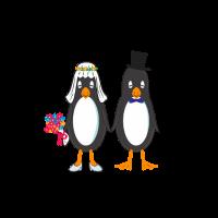 Pinguin Ehepartner Heirat