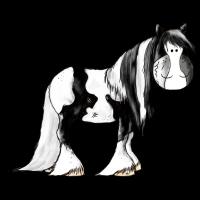 Irish Tinker Pferd - Pinto