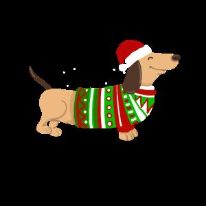 Weihnachten Dackel Weihnachtsmann Geschenk lustig