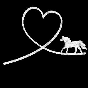 Pferd Pferde Pferdeliebhaber Reiterin Shetlandpony