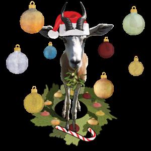 Antilope l Weihnachten Mistel Zuckerstange crazy