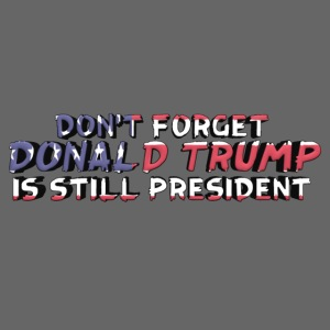 Don't Forget: Donald Trump is still president
