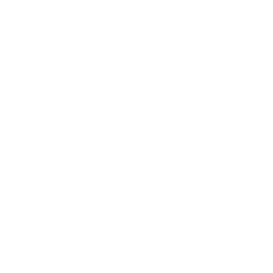 Problem Engineer Solution
