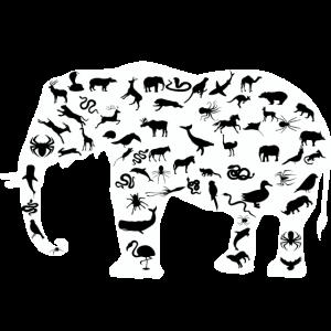 Elefant Tierliebe Tierschutz Tierfreund Geschenk